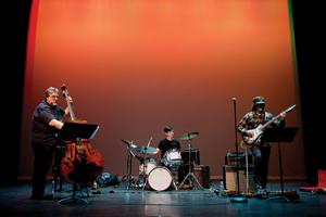 Anthony Pirog Trio